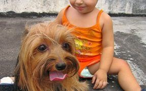 Dog and Child Relationships