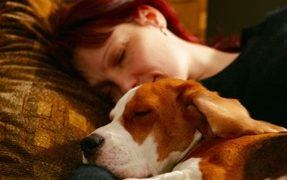 Should Your Dog Sleep With You?
