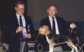 Are Dog Shows Creating Unhealthy Breeds?