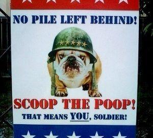 Scoop the Poop   photo by LuLu Hoeller
