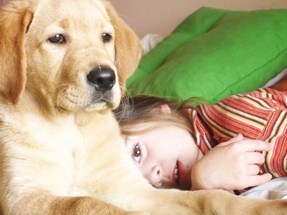 Teaching Kids How to Behave Around Dogs