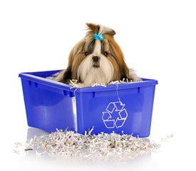 dog-recycle
