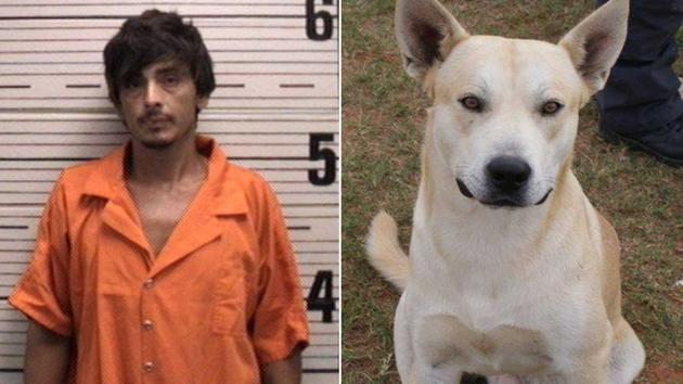 Good boy, Bo! When this man tried to elude police, it was his dog, Bo, that led them right to him! Photos via Prattville Police Department.