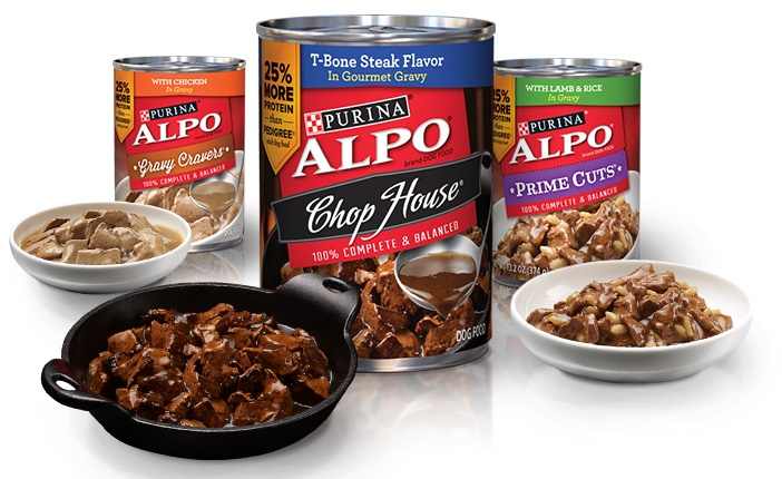 Nestle Purina Commits Significant Violations At Pet Food Canning