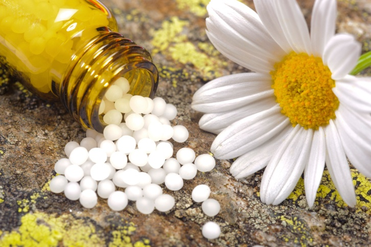 Homeopathic Remedies & Flower Essences for Your Dog's