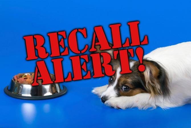 Addiction Dog Food Recall