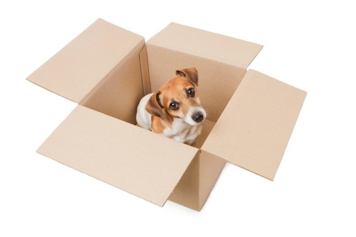 movingbox