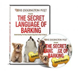 Barking_DVD