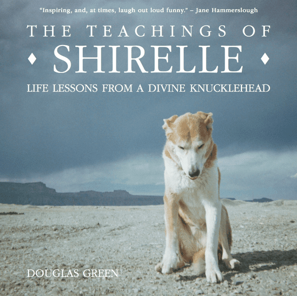 The Teachings of Shirelle