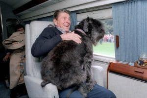 "11/1/1985 President Reagan aboard Marine One with his dog ""Lucky"" on his lap."