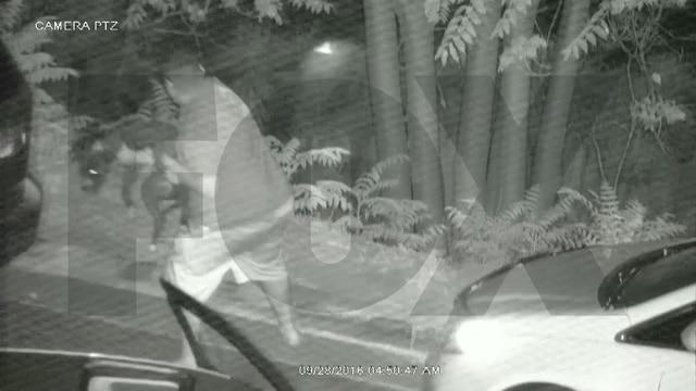 video_screenshot