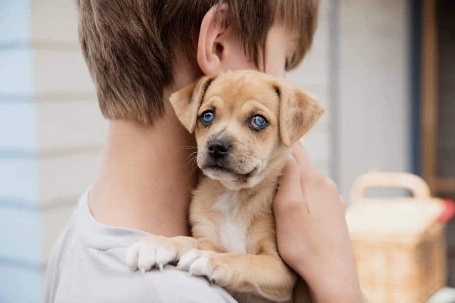 Adoption-min