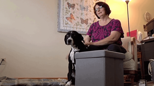 church refuses to allow service dog
