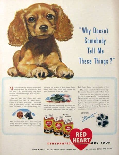 Food for Thought: 28 Fascinating Vintage Dog Food Ads - The