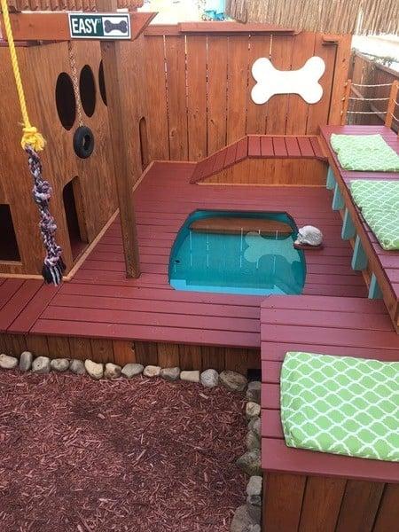 dog playground