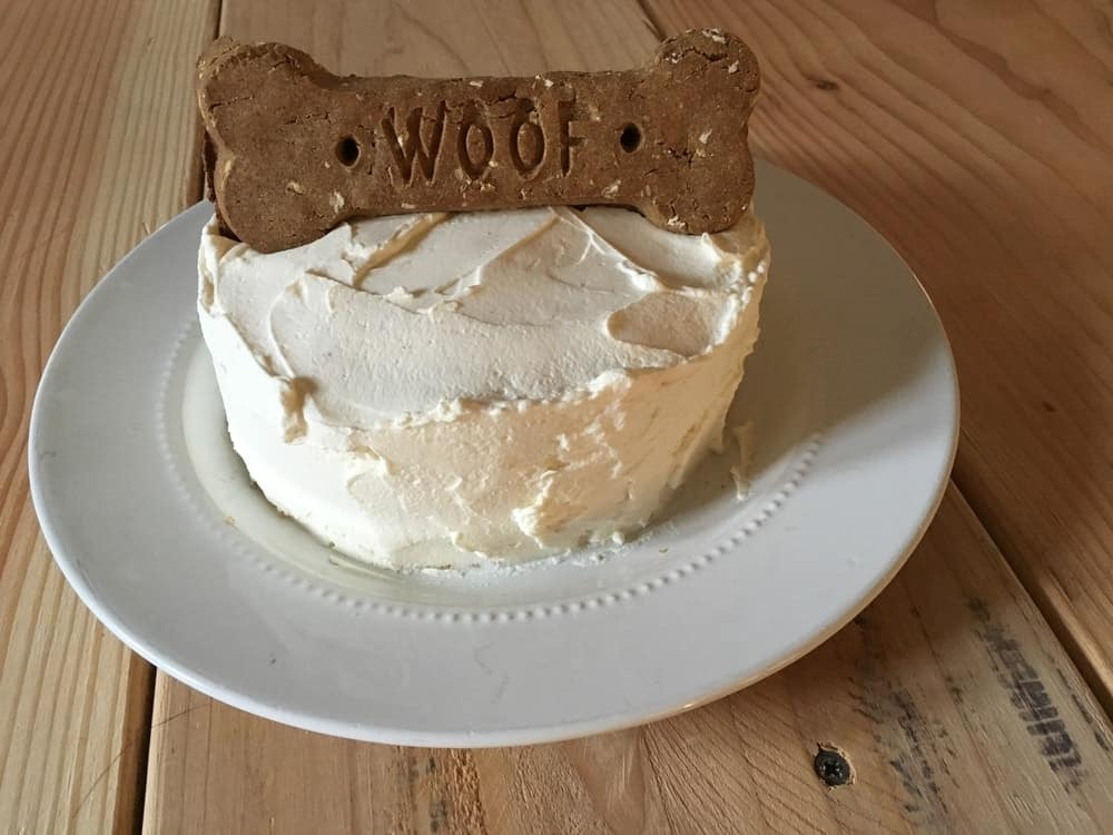 Celebrate Your Dogs Birthday With These Easy Peasy Dog Cake Recipes