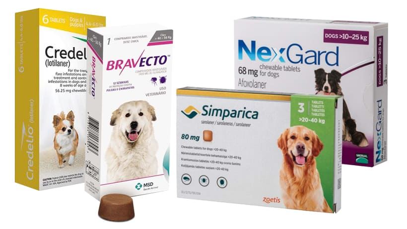 FDA WARNS: Flea and Tick Medications Linked to Seizures, Muscle Tremors in Dogs Cats