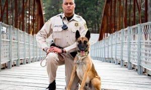 deputy fired